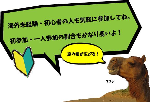 camel-banner